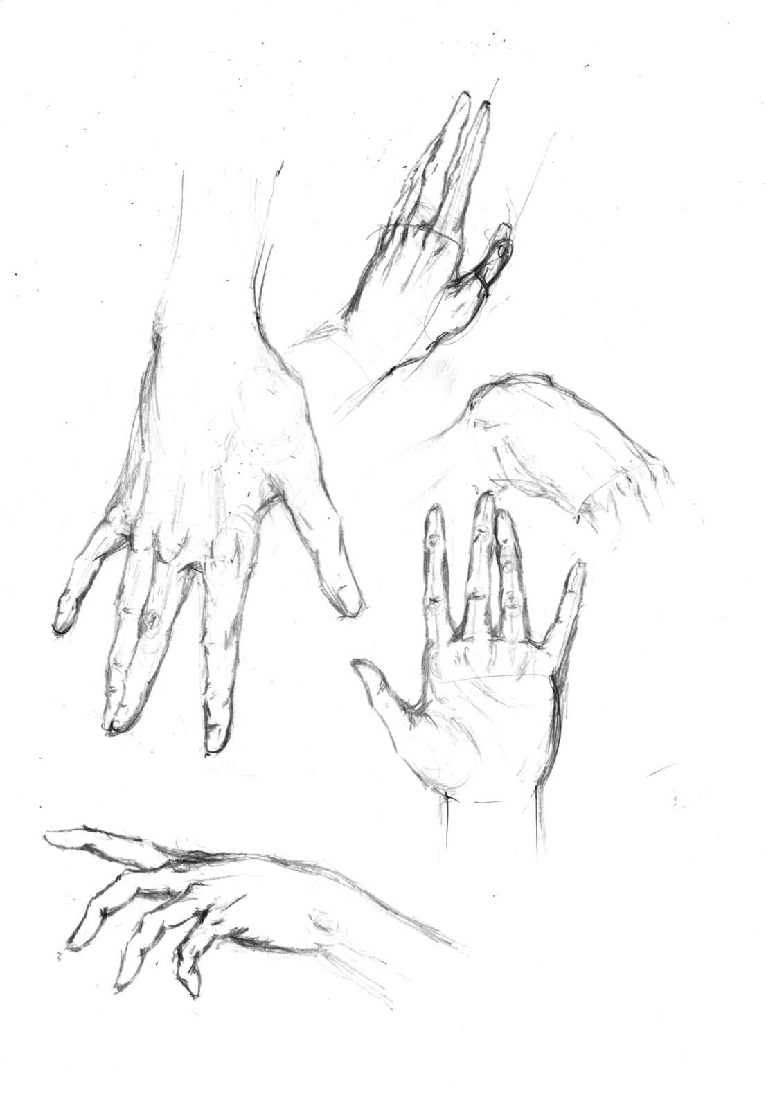 Alex grund hand drawn alex grund 6