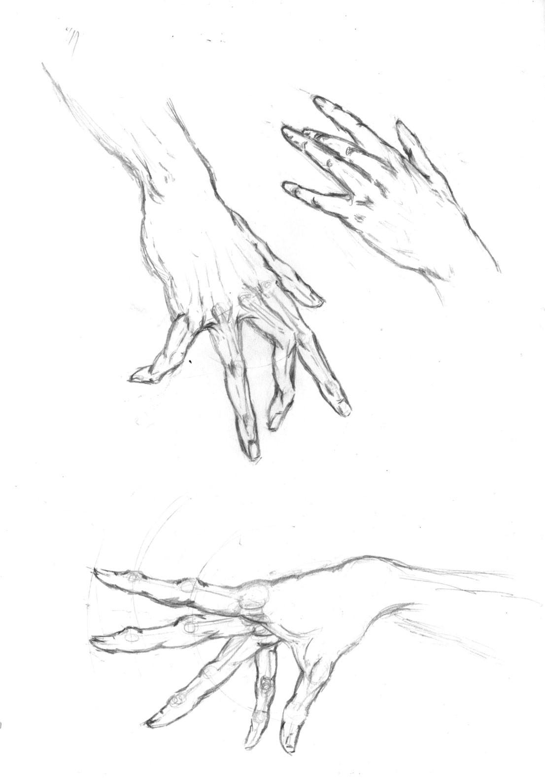 Alex grund hand drawn alex grund 7