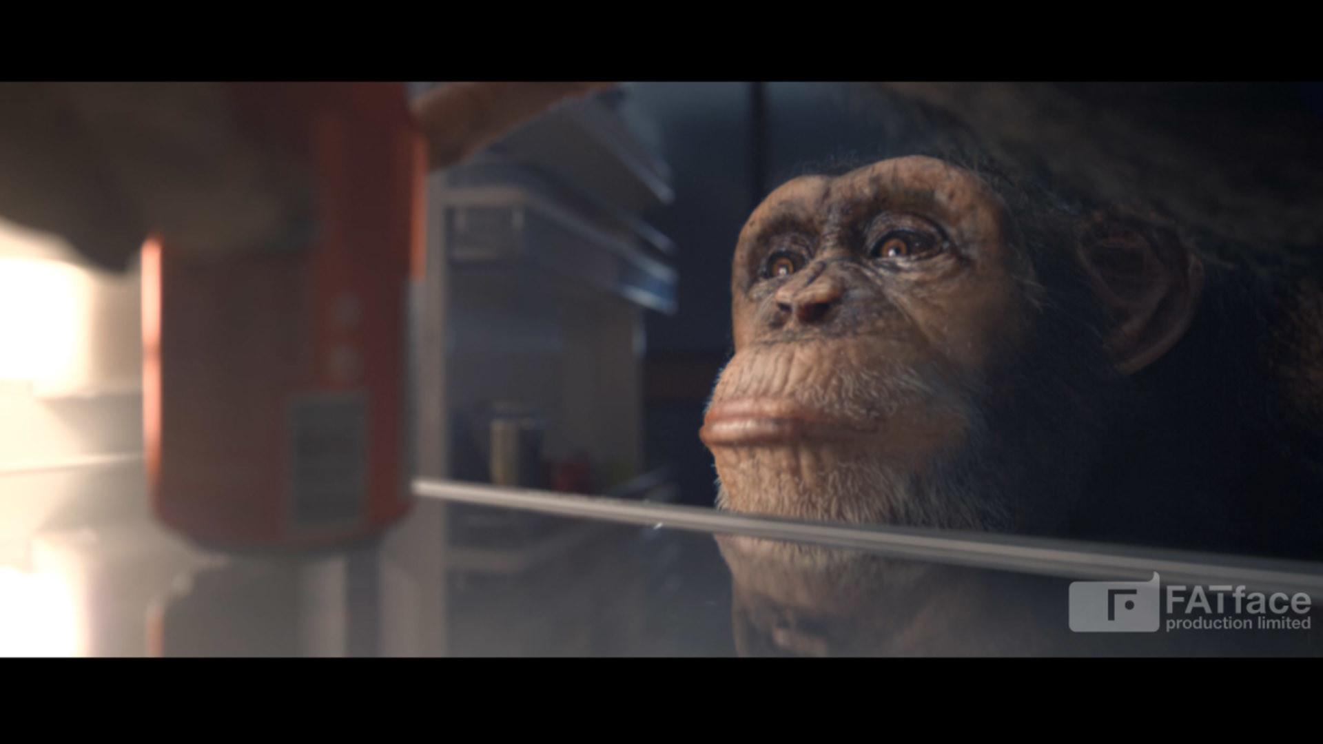 Nelson tai chimpanzee dsgn screens 001d