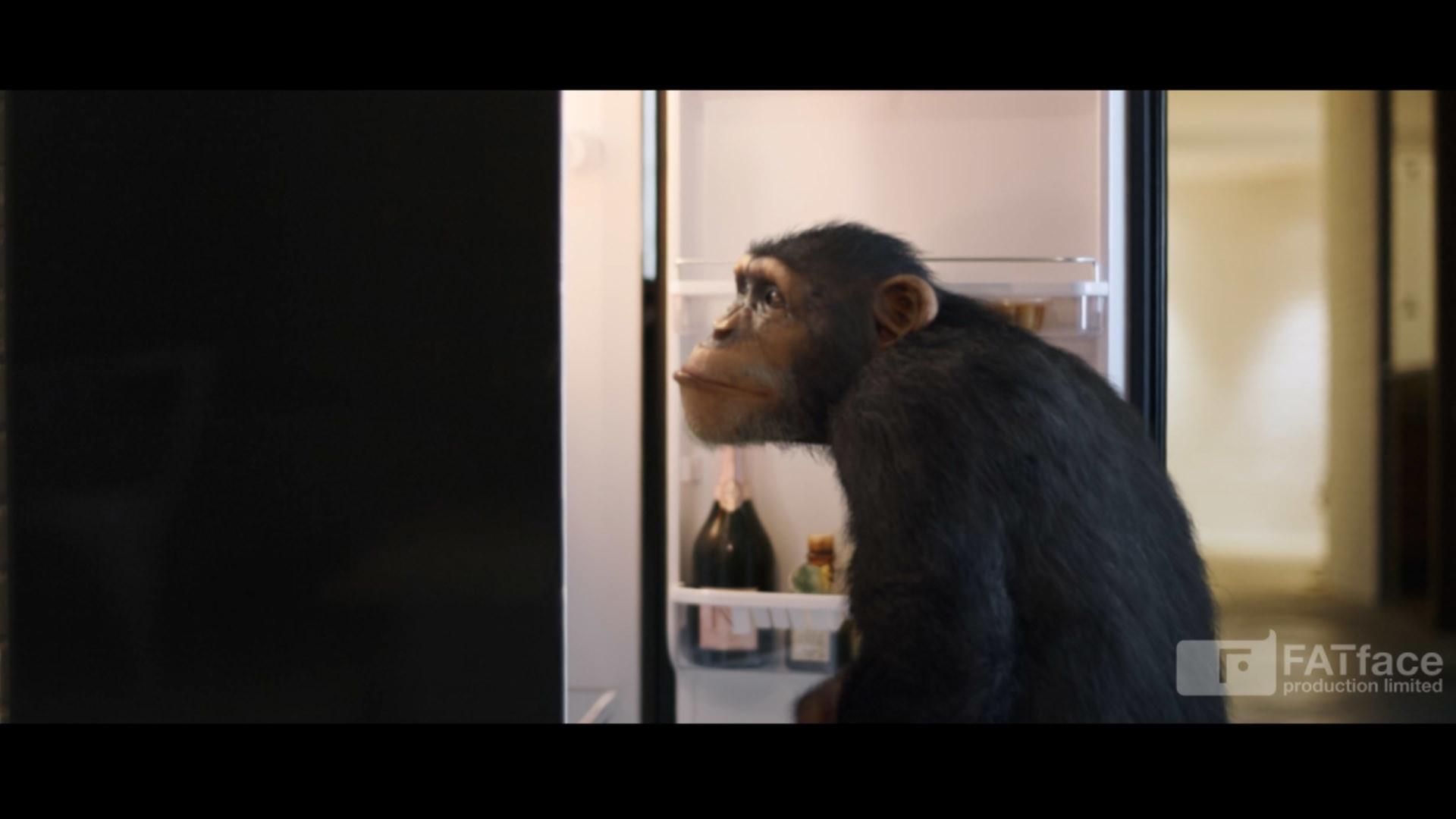 Nelson tai chimpanzee dsgn screens 001c