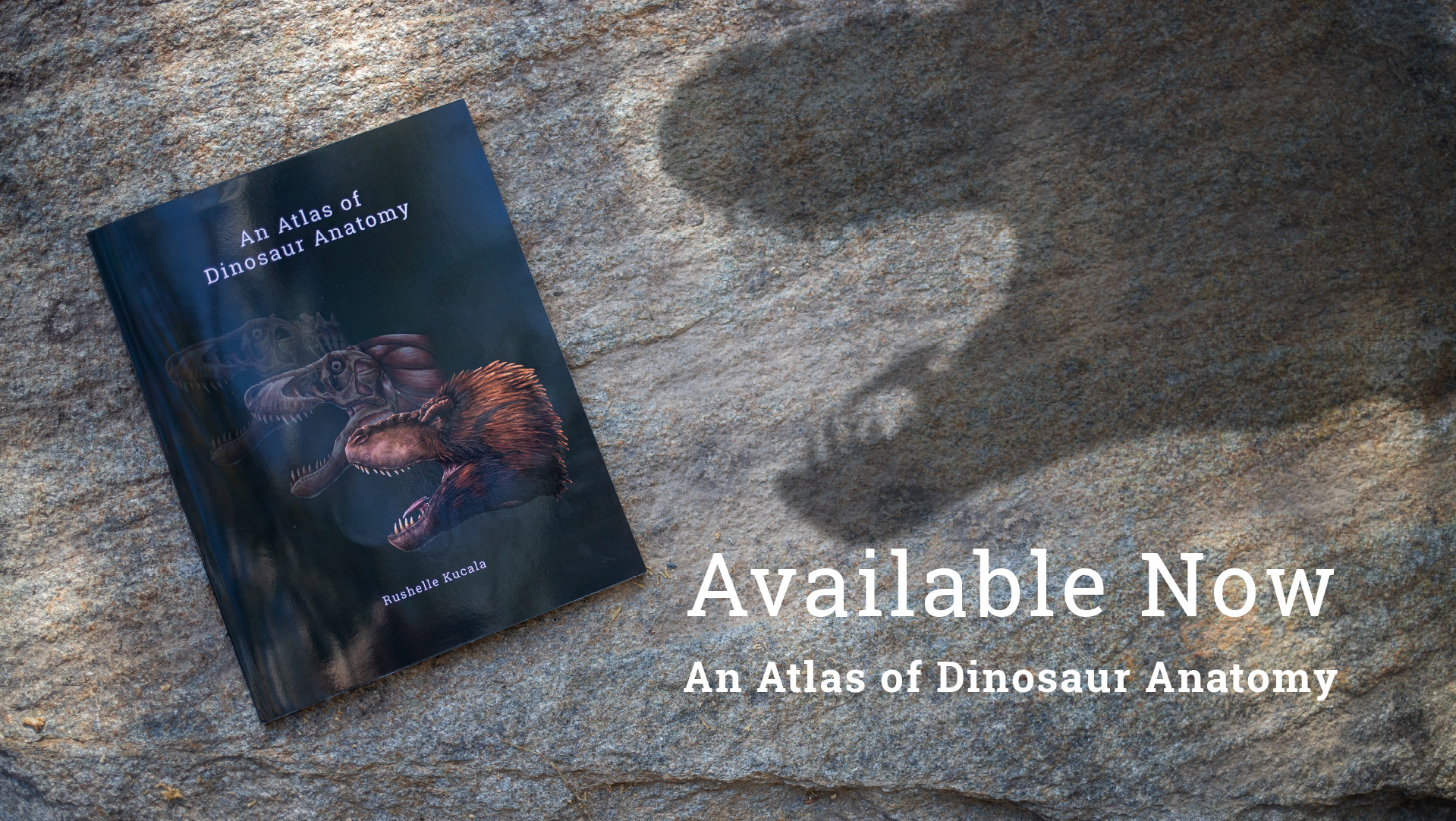 Artstation An Atlas Of Dinosaur Anatomy Available Now Rushelle Kucala