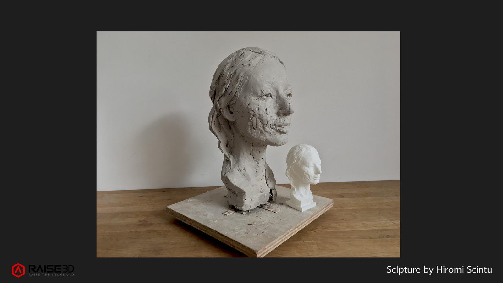 Hiromi Portrait 3D Print