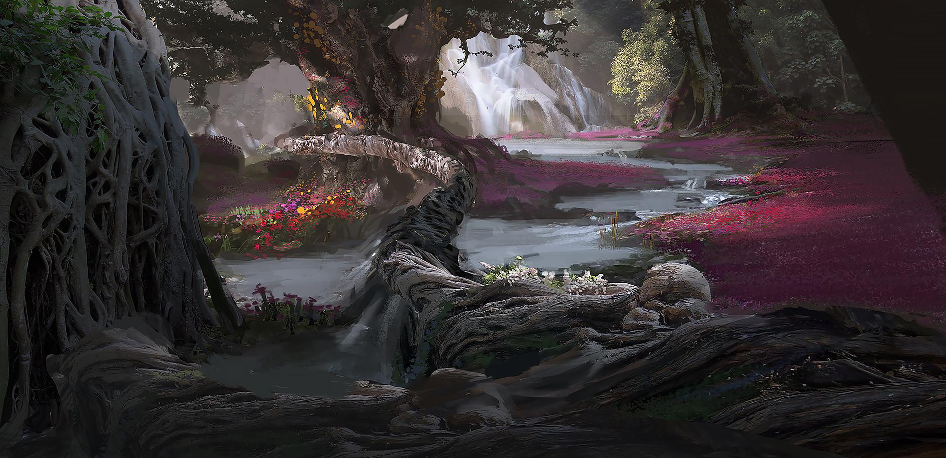 Finnian macmanus forest2