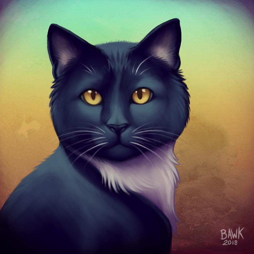 Stephanie koch cats