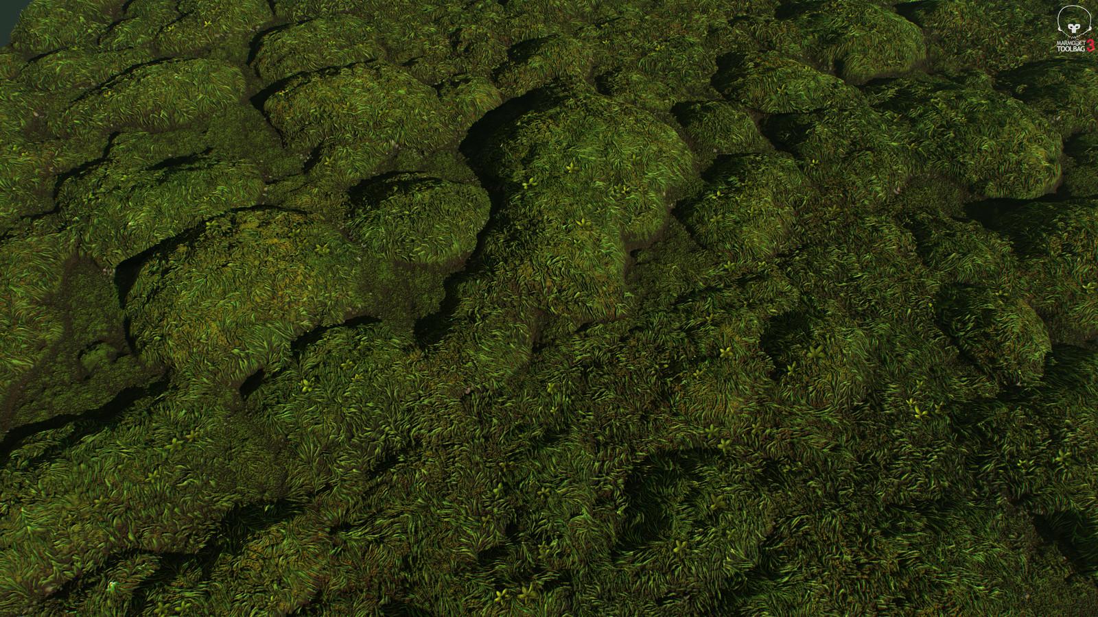 Moss & Grass 01