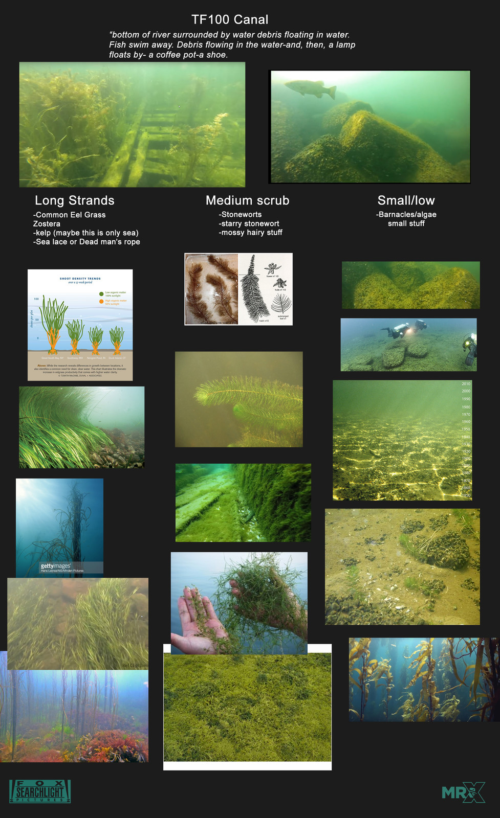 This was something I made to help guide the eventual environment build and asset artists.  Eel-grass was ideal as it mirrored the look of Elisa's hair and grew in brackish water.