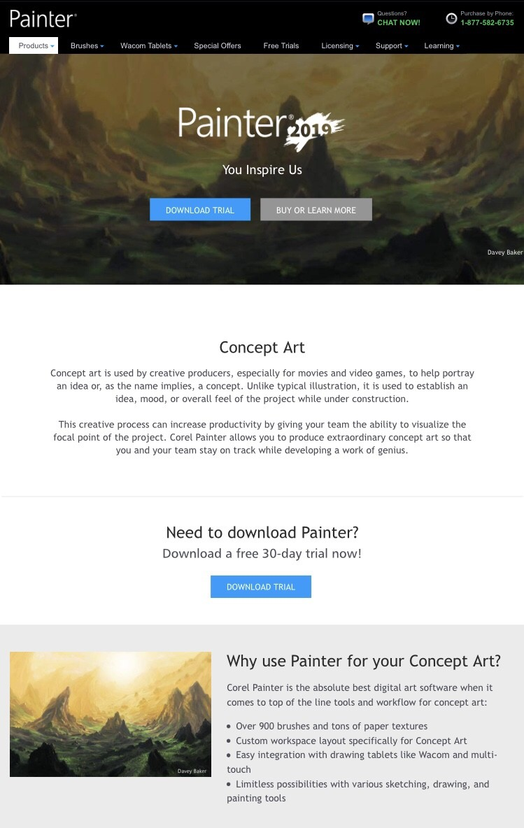 Painter 2019 page with my design