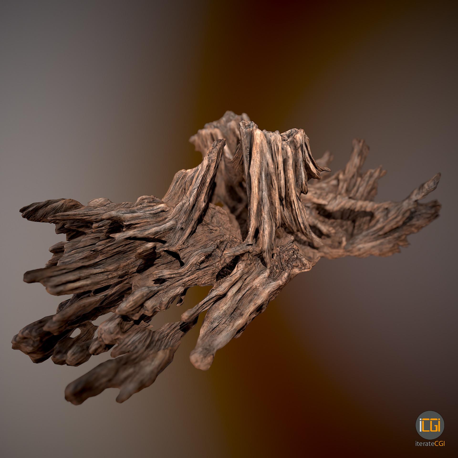 Johan de leenheer driftwood piece cft1 1