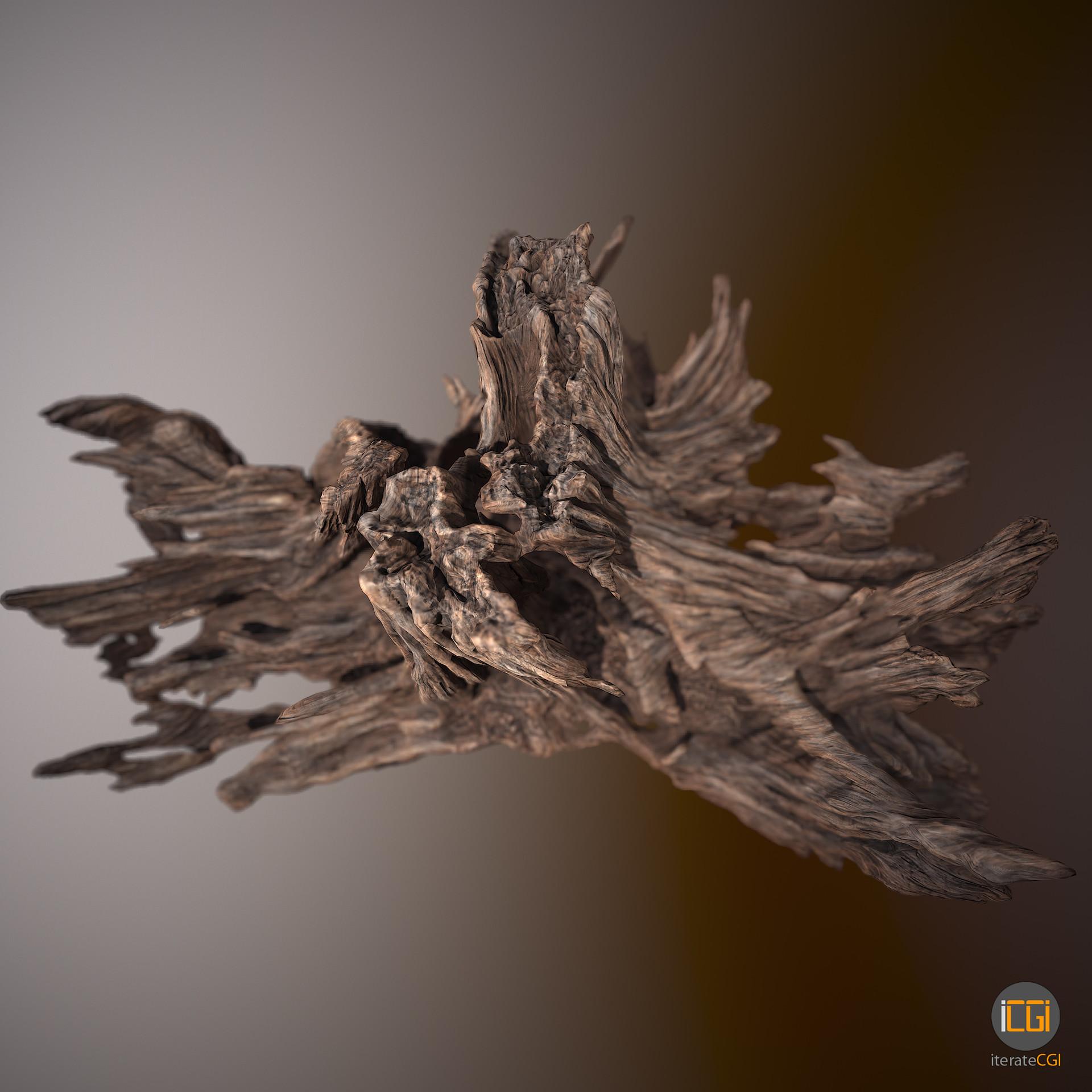 Johan de leenheer driftwood piece cft1 3