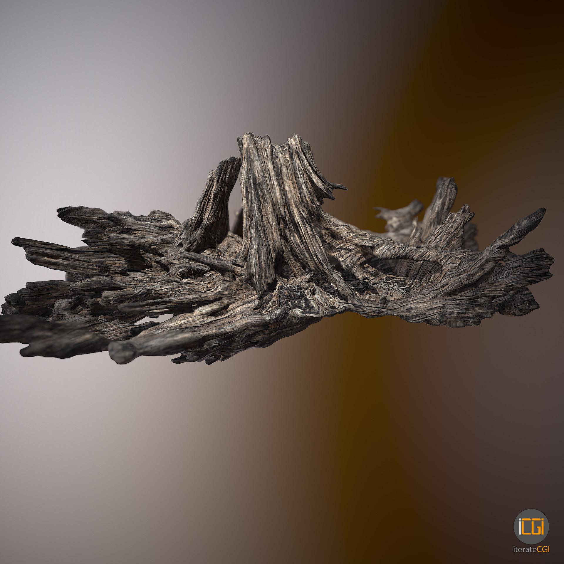 Johan de leenheer driftwood piece cft1 12