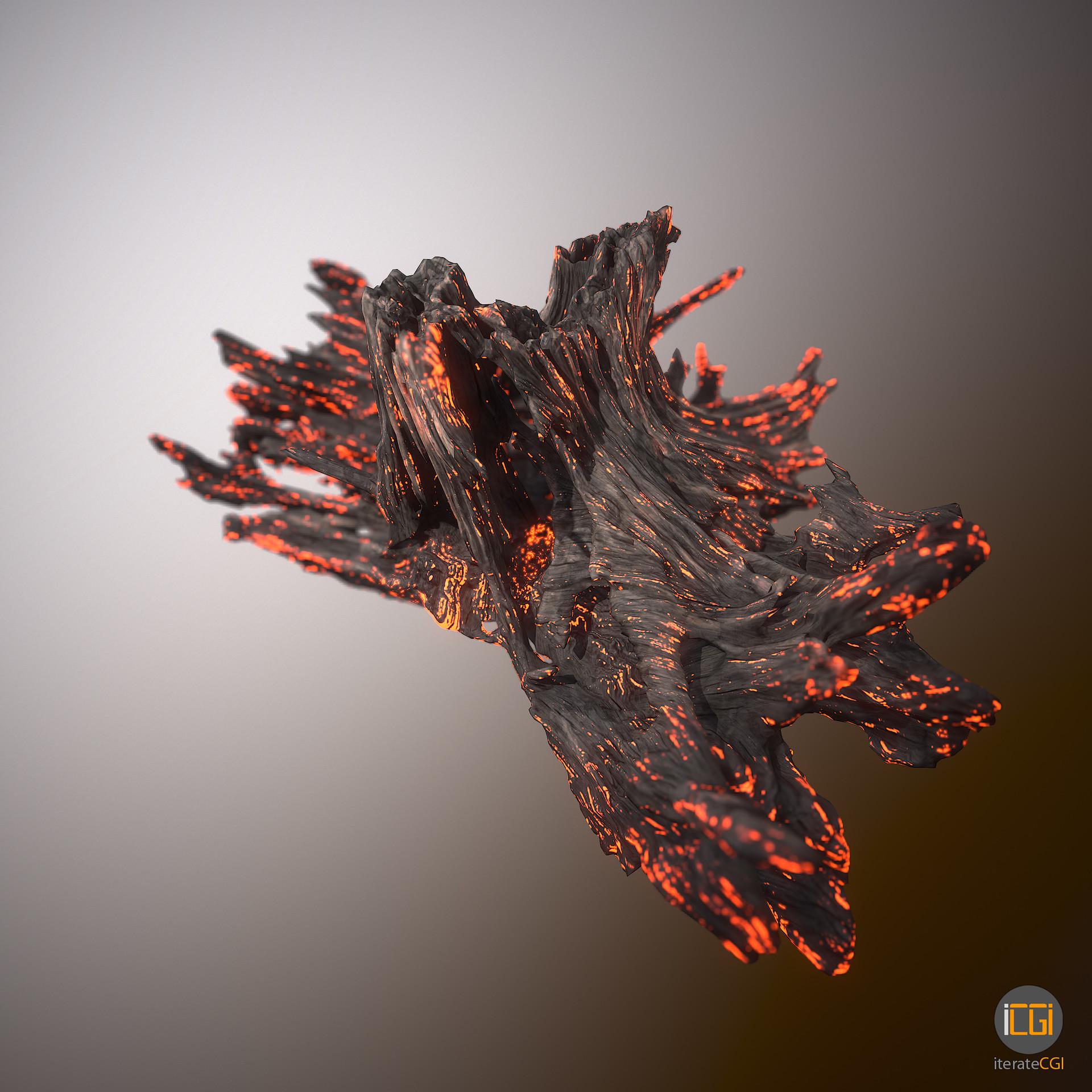 Johan de leenheer driftwood piece cft1 15