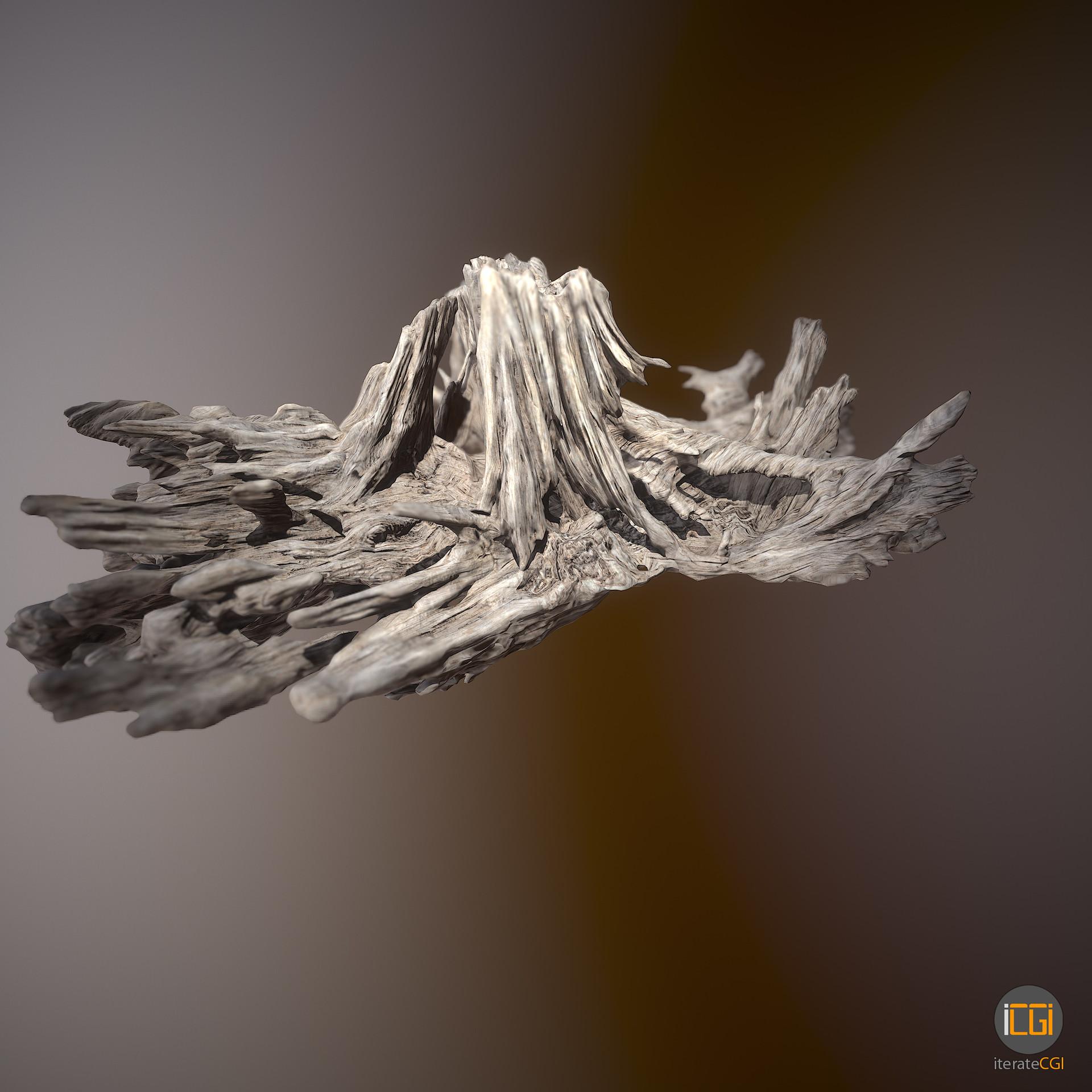 Johan de leenheer driftwood piece cft1 24