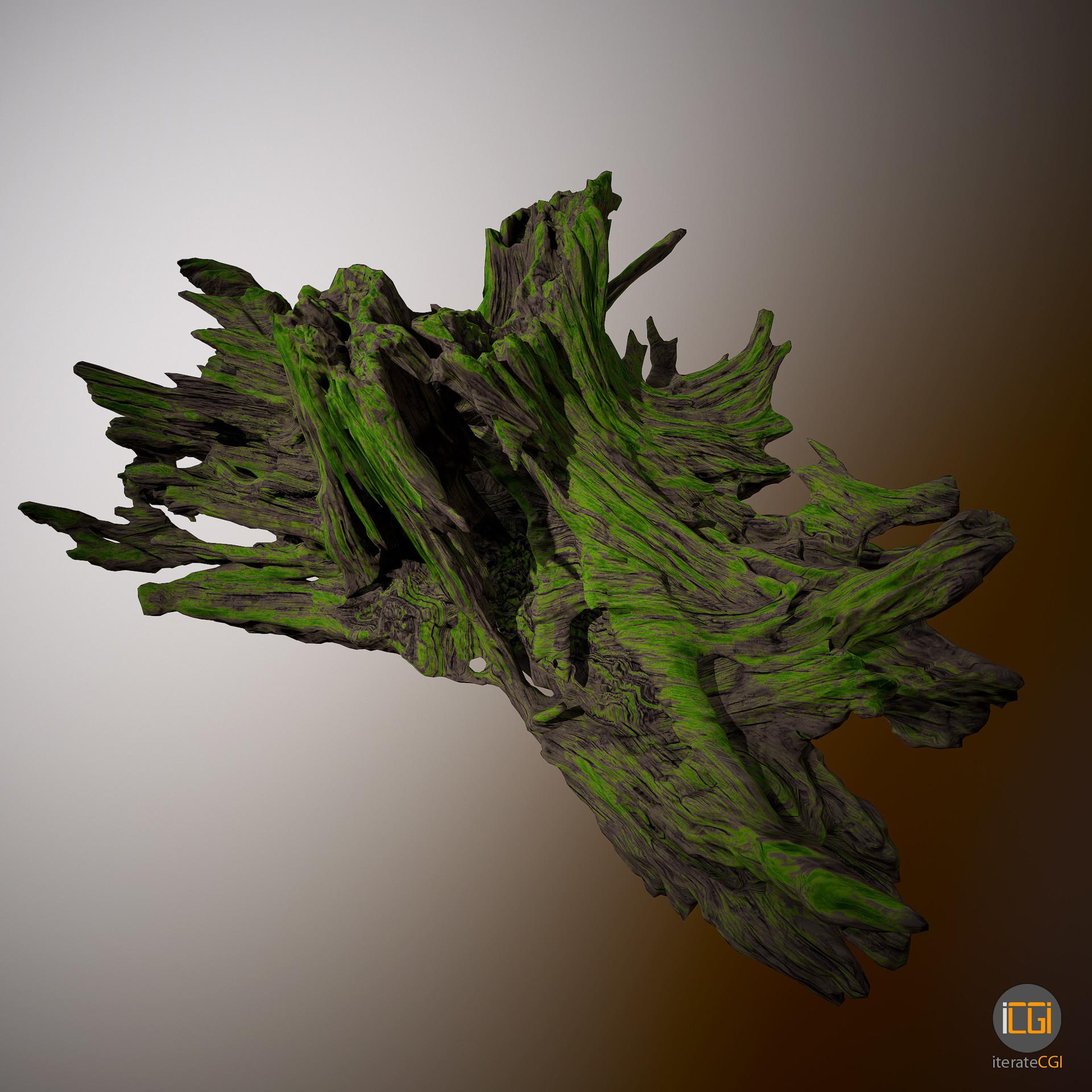 Johan de leenheer driftwood piece cft1 25