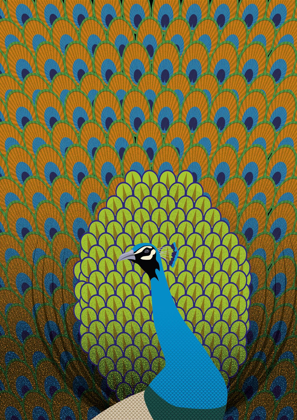 Rajesh r sawant peacock 01