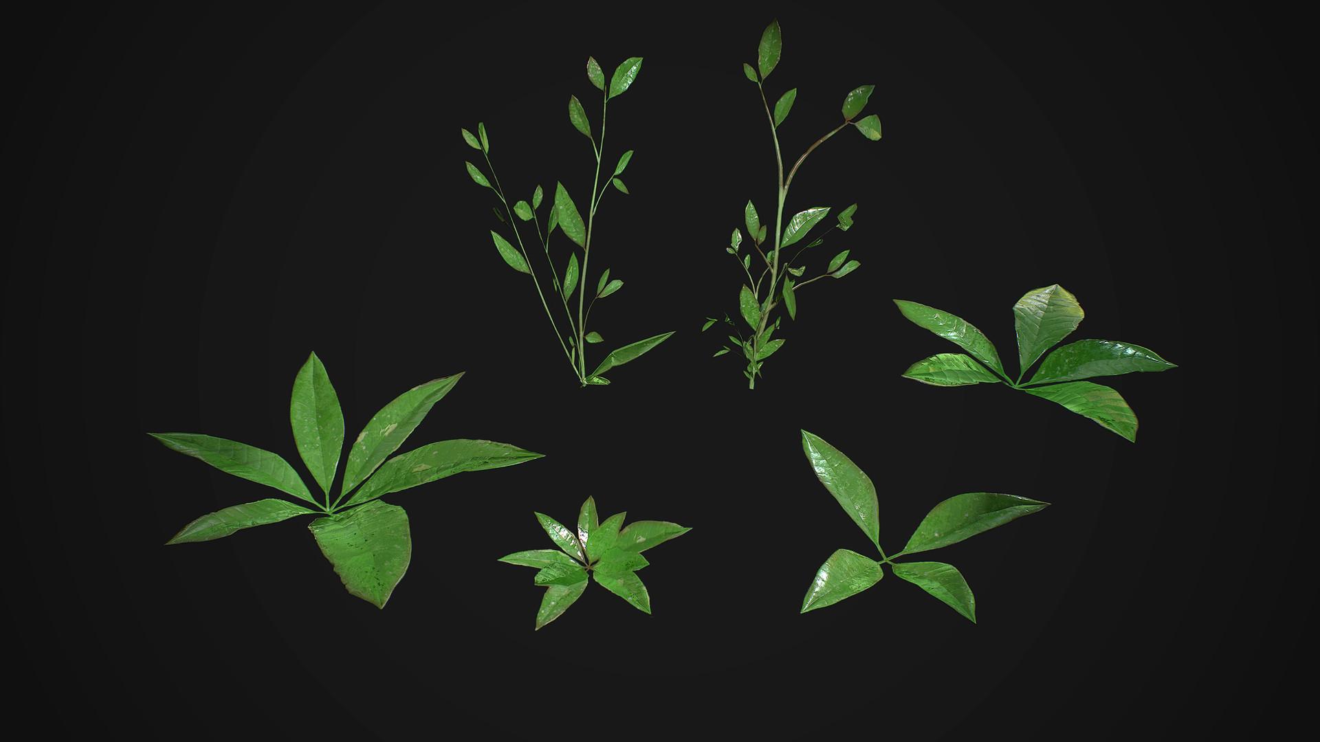 Sebastian schulz weeds marmo