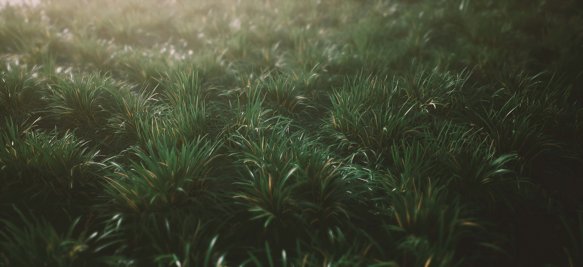 Sebastian schulz ue4 grass interaction 05