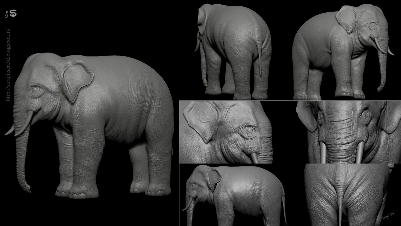 """One of my old works """"Asian Elephant"""" . Last week I did  some more works on it. Wish to share."""