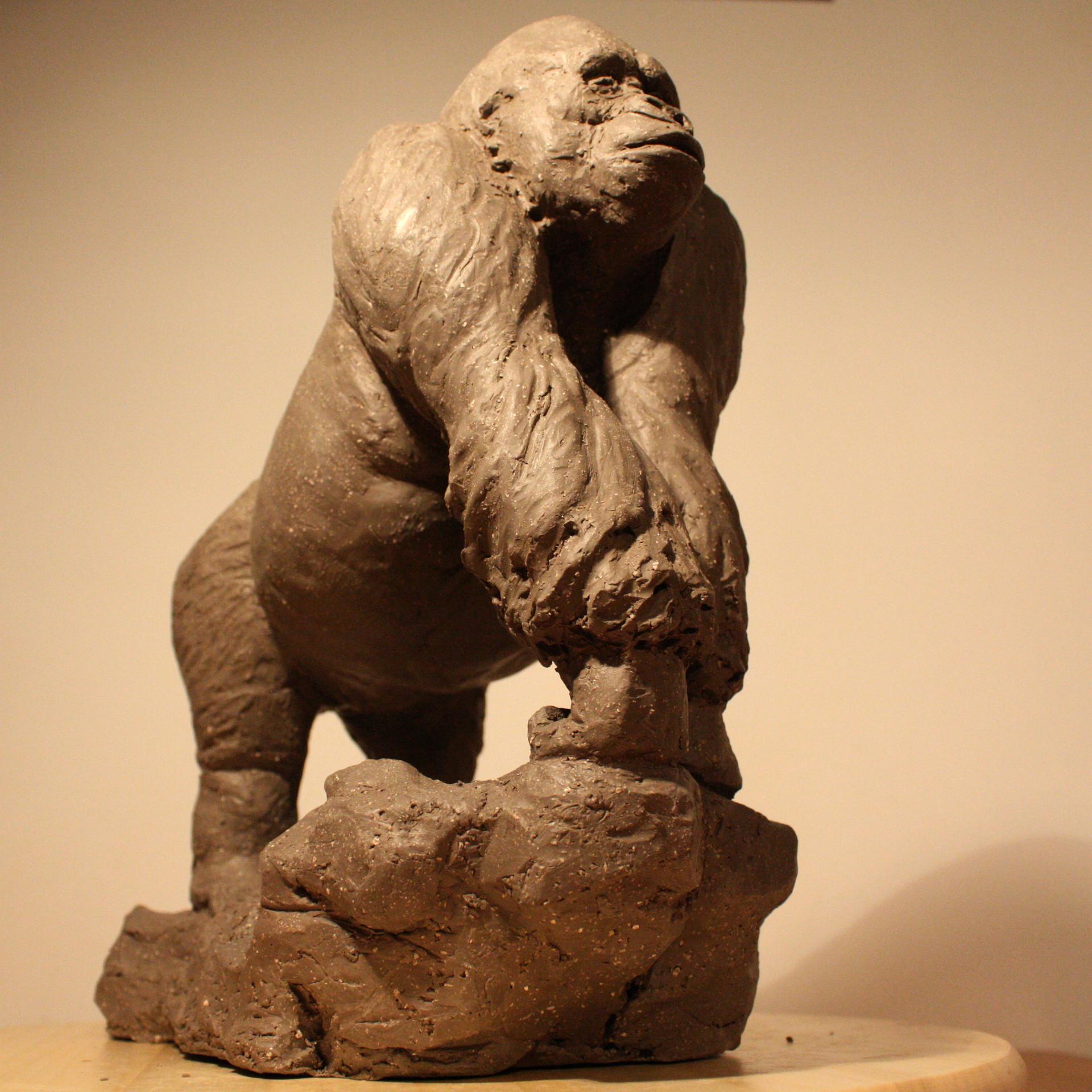 Clement bassery gorilla1