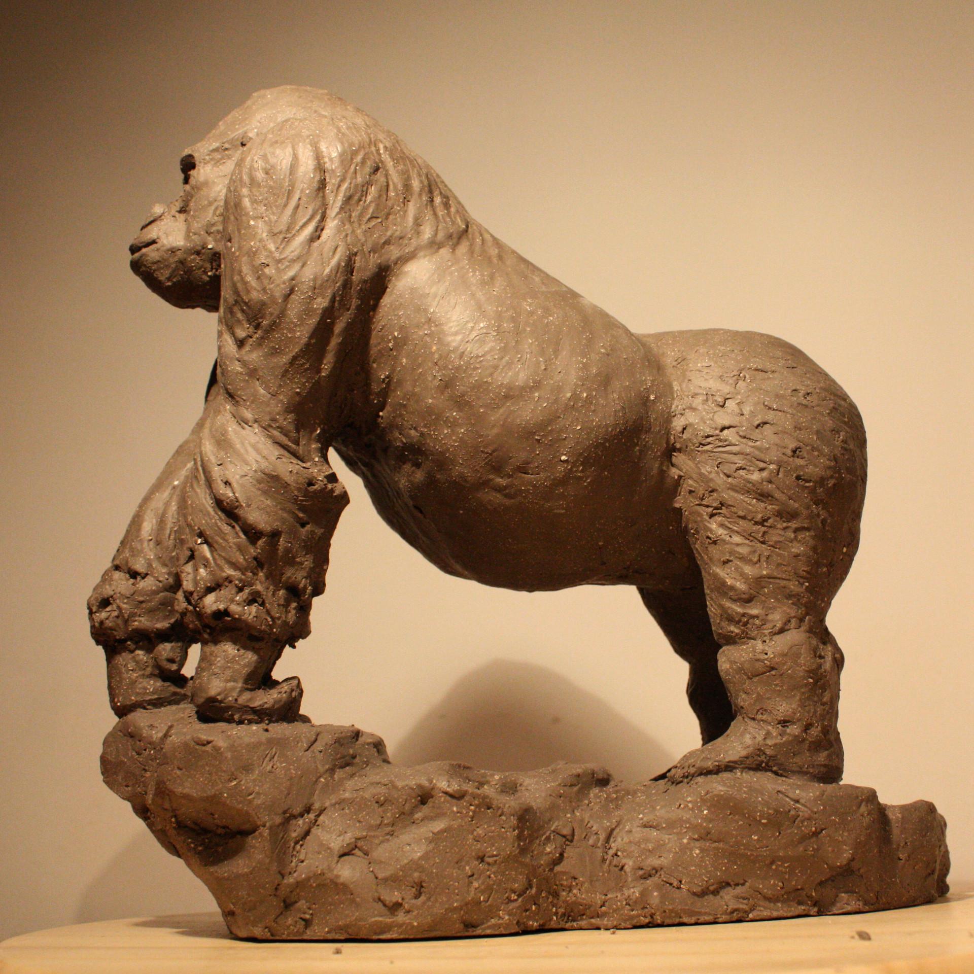 Clement bassery gorilla2