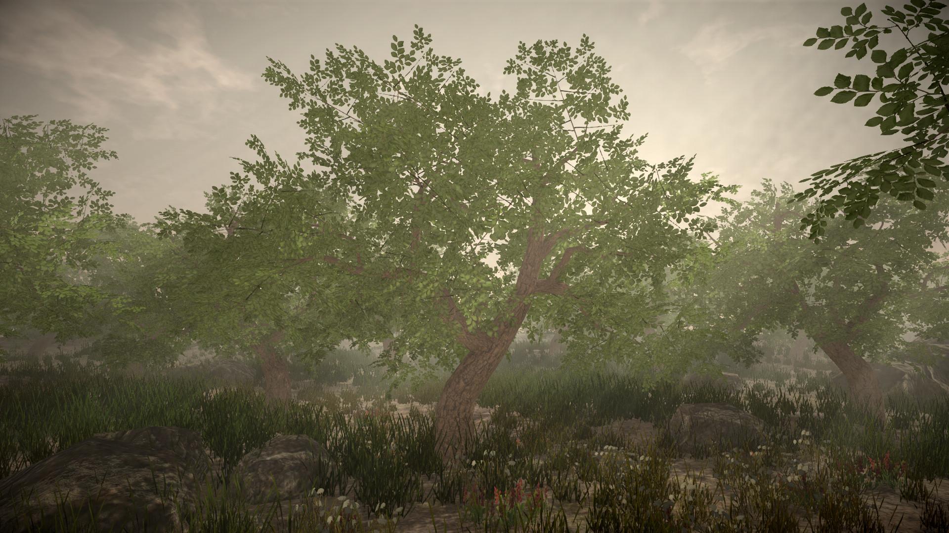 Jordan cameron tree 3