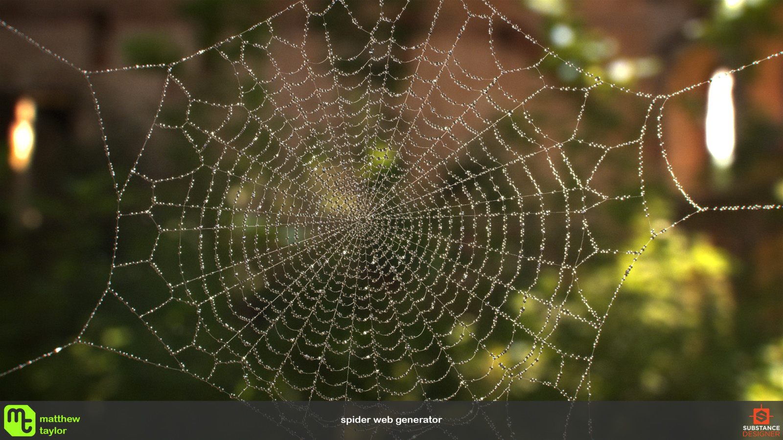 Spider Web Generator.