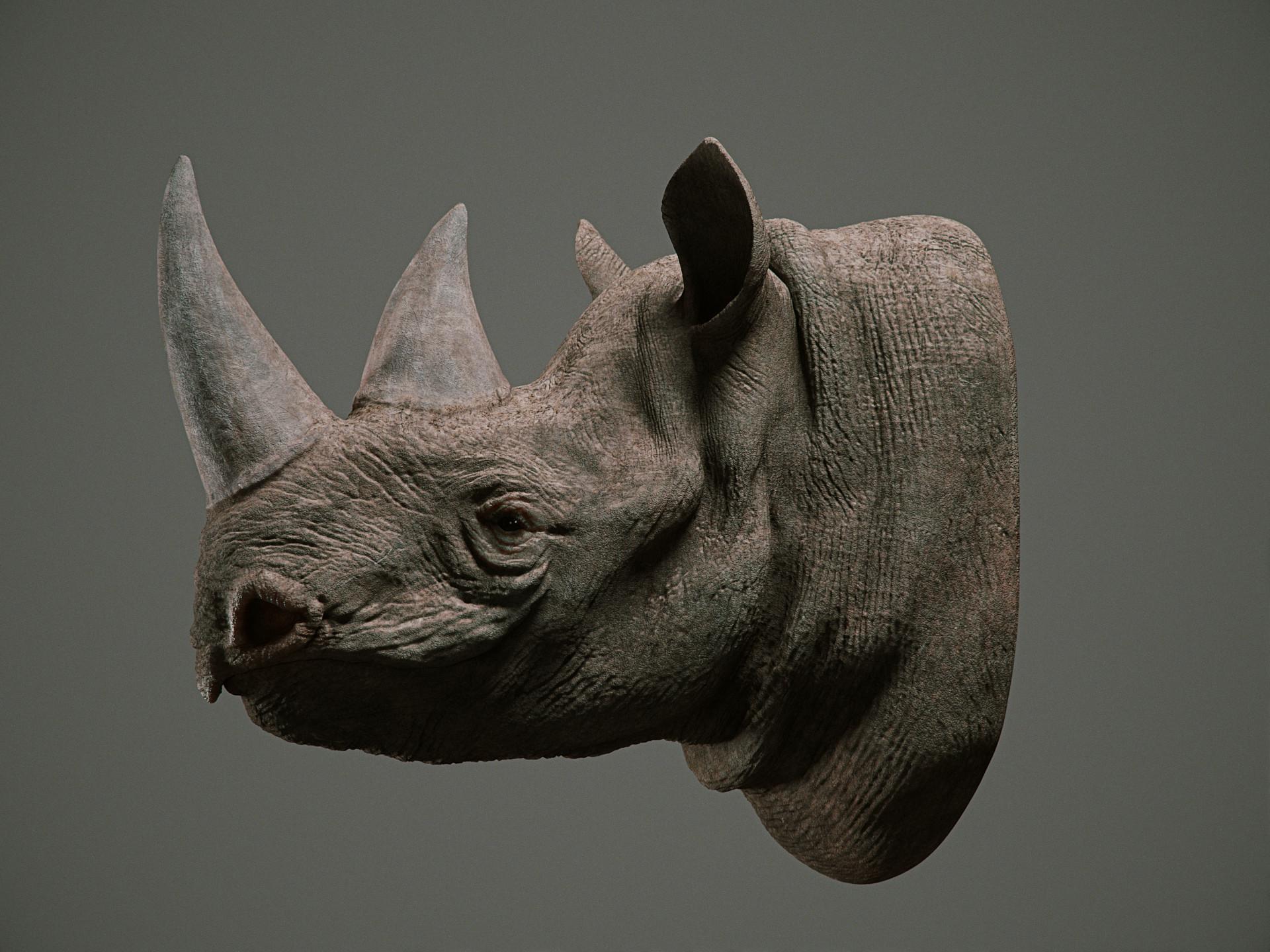 Cgmonkeyking rhino pn01 pp 0002