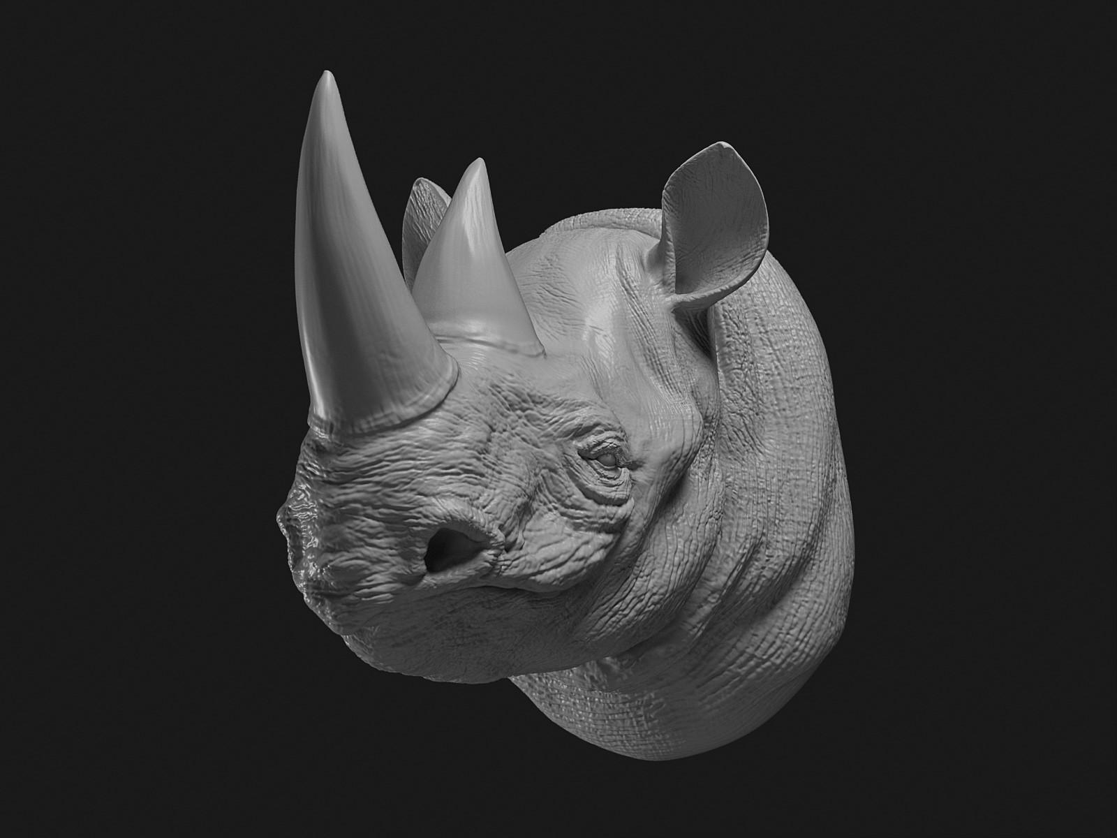 Cgmonkeyking rhino clay pp 0000