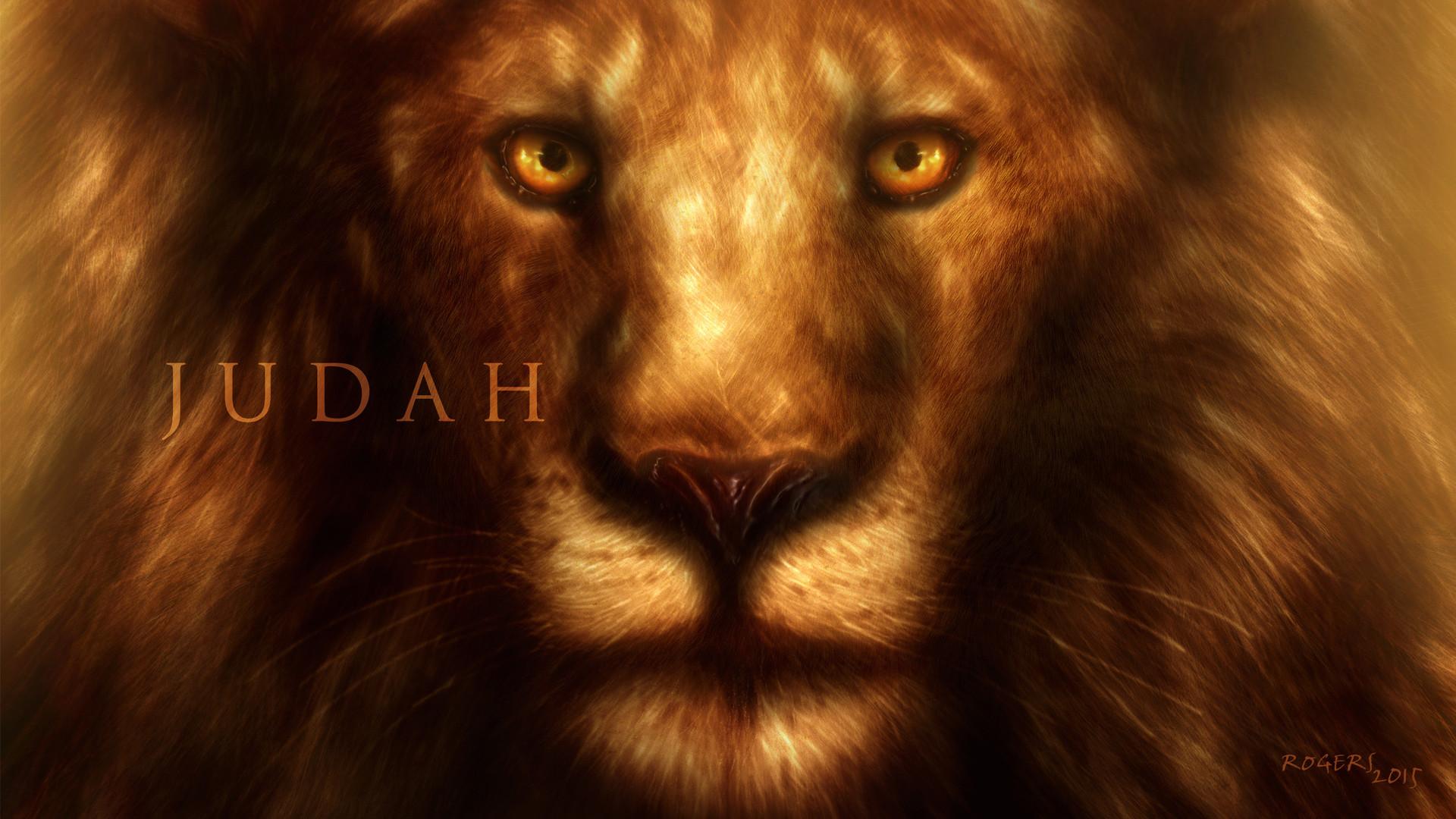 Lion Of Judah Iphone Wallpaper Best Hd Wallpaper
