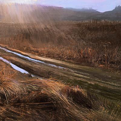 Tymoteusz chliszcz landscape91 by chliszcz