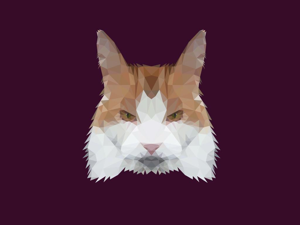 Poly Cat