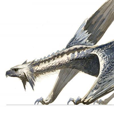 Joon ahn demacia raptors 02