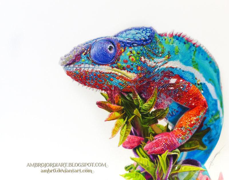 423c8c149 ArtStation - Chameleon Drawing + Video, AmBrO Jordi