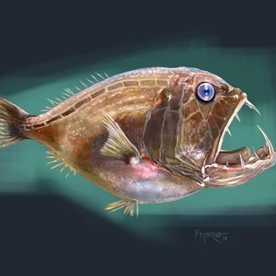 Fernando merlo fish color