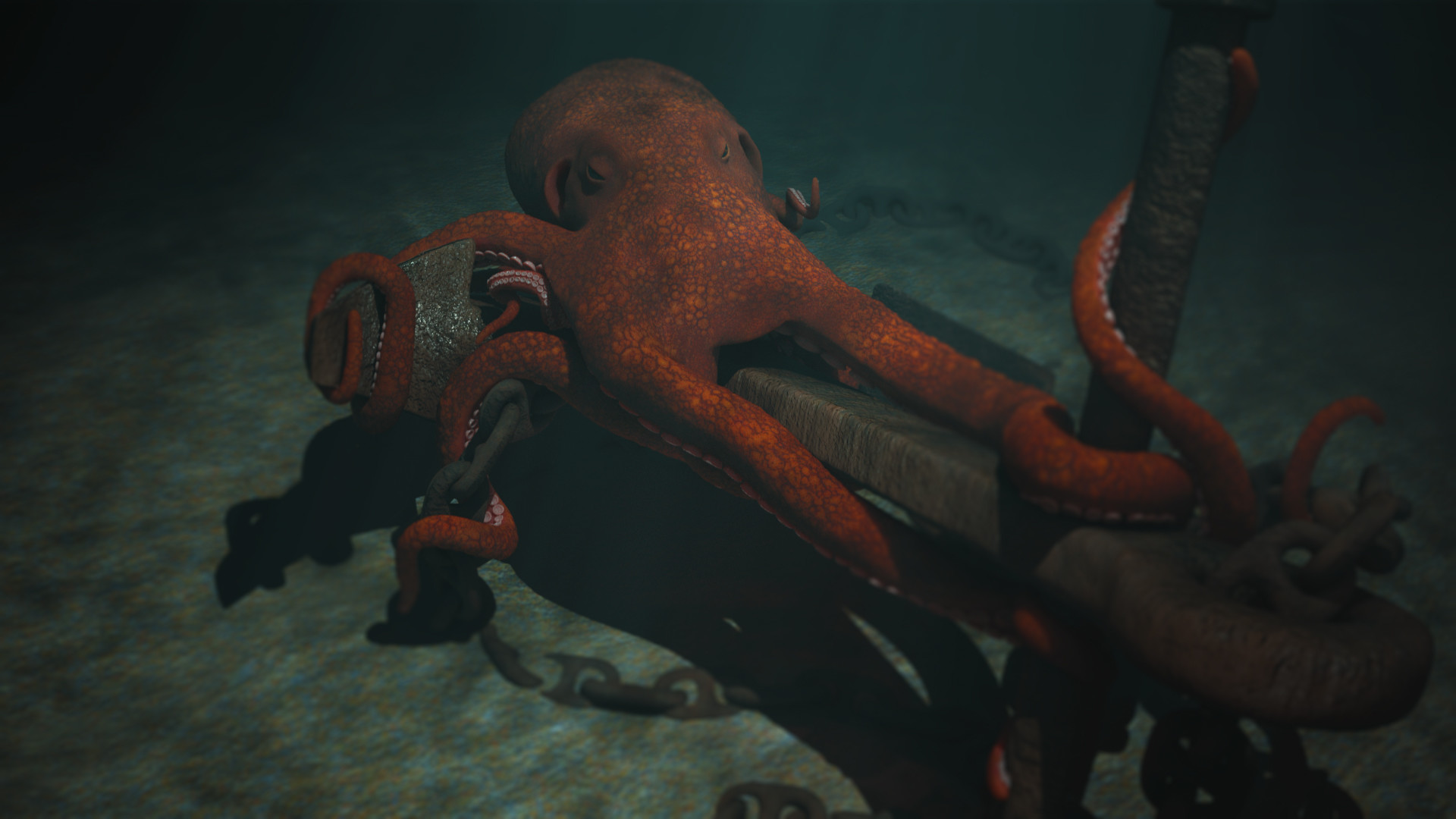 Josh mccann octopus 002