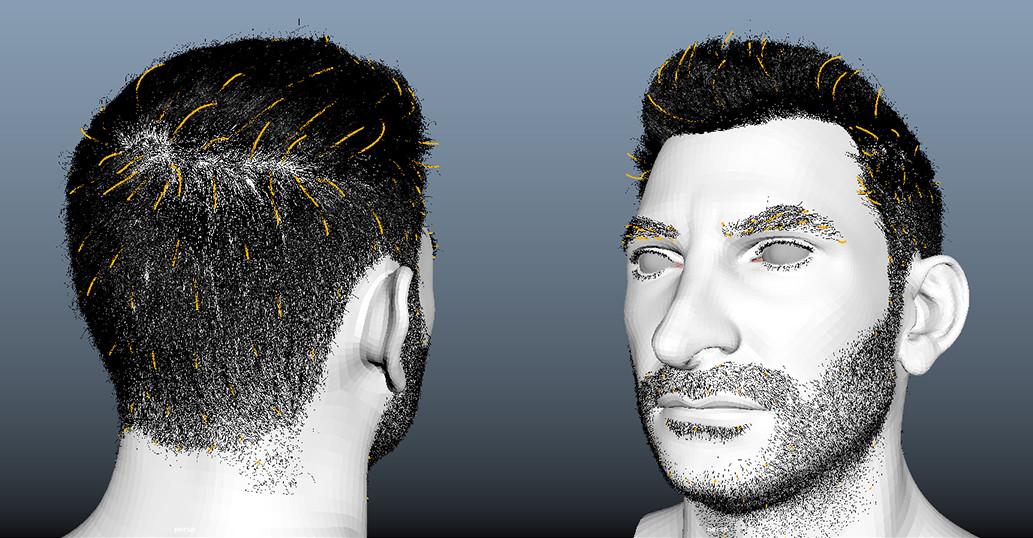 XGen hair guides