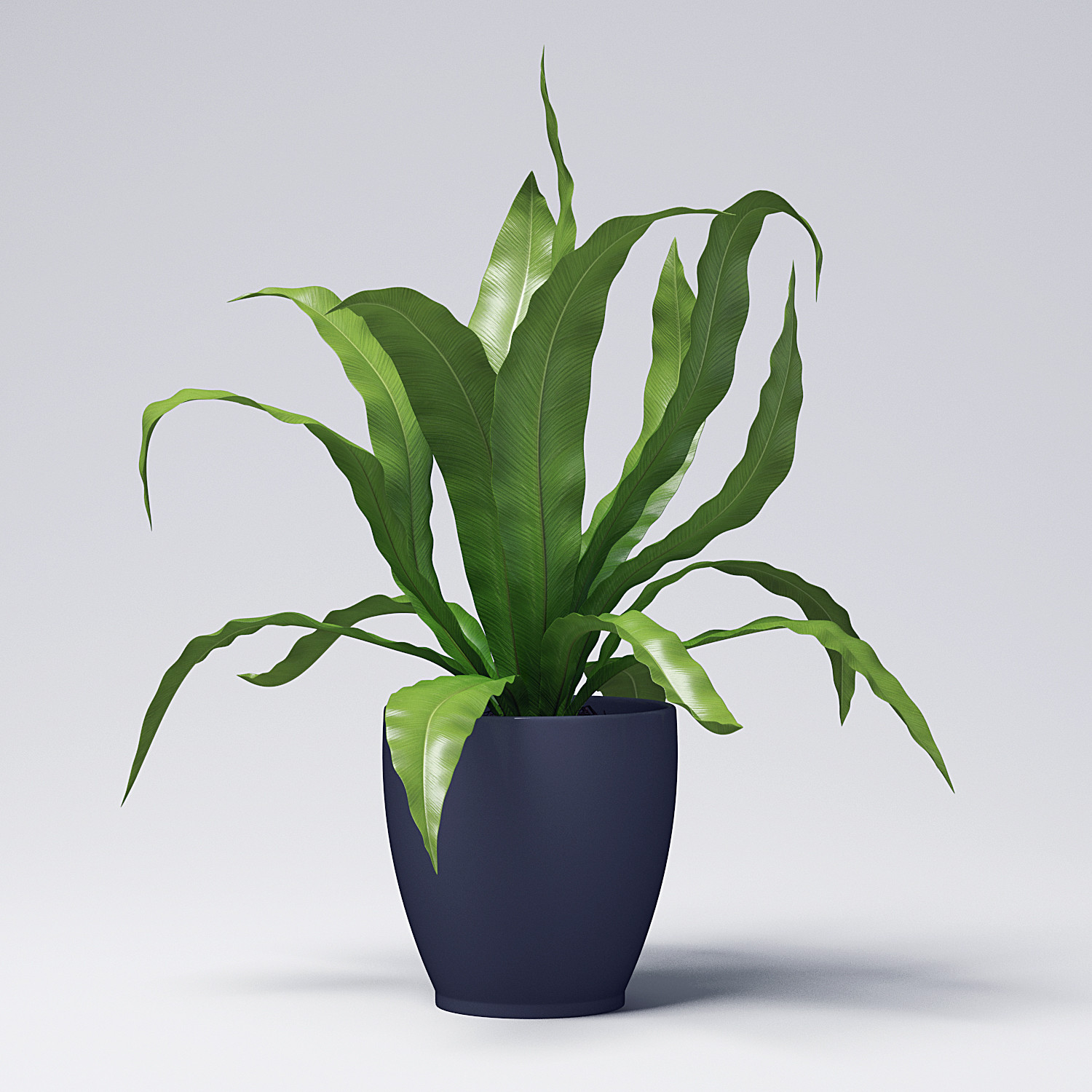 Svizze 3D Art - Plant 3D Model