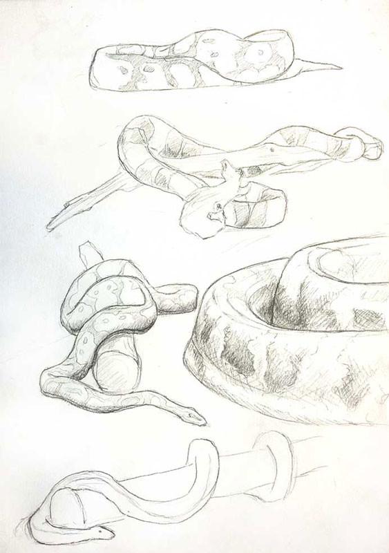 Gaelle seguillon gaelle seguillon sketch 01