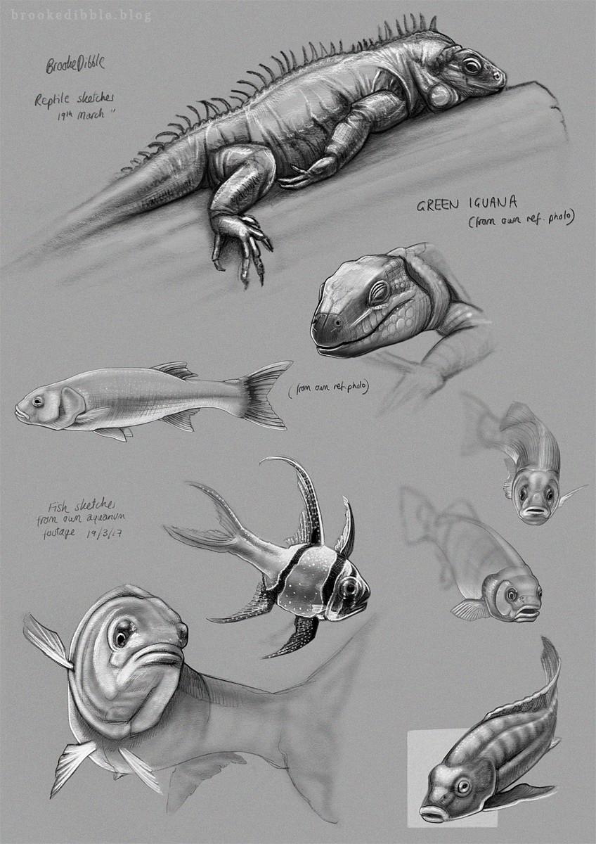 Sketches - ZSL and Aquarium