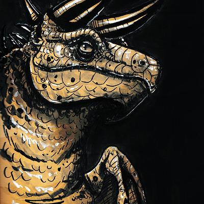 Molly heady carroll dragon