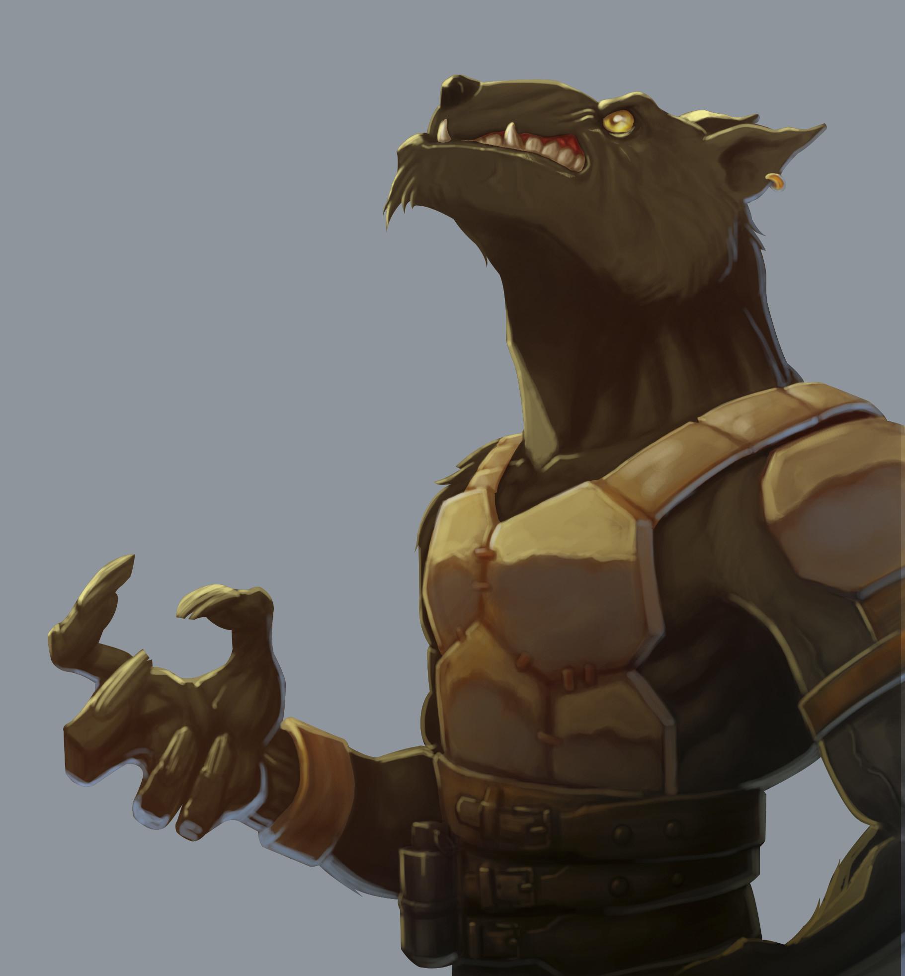 Ludovic rivalland wolf