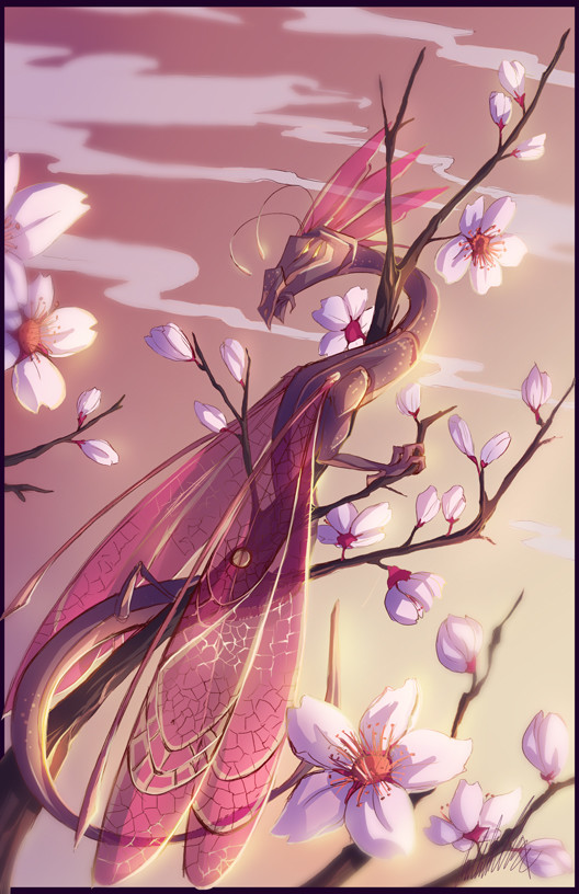 DRAGONFLY BLOSSOMS