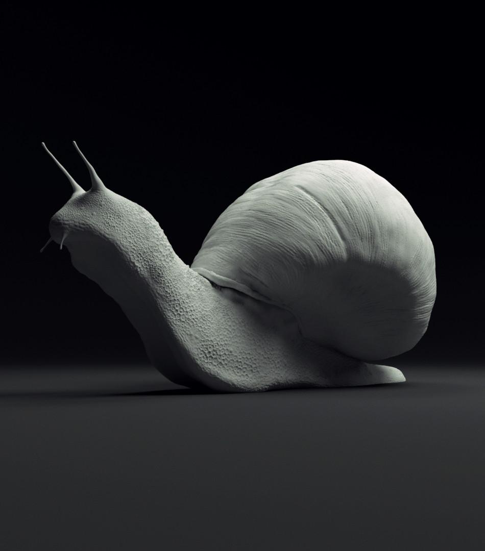 David sanchez snail 04