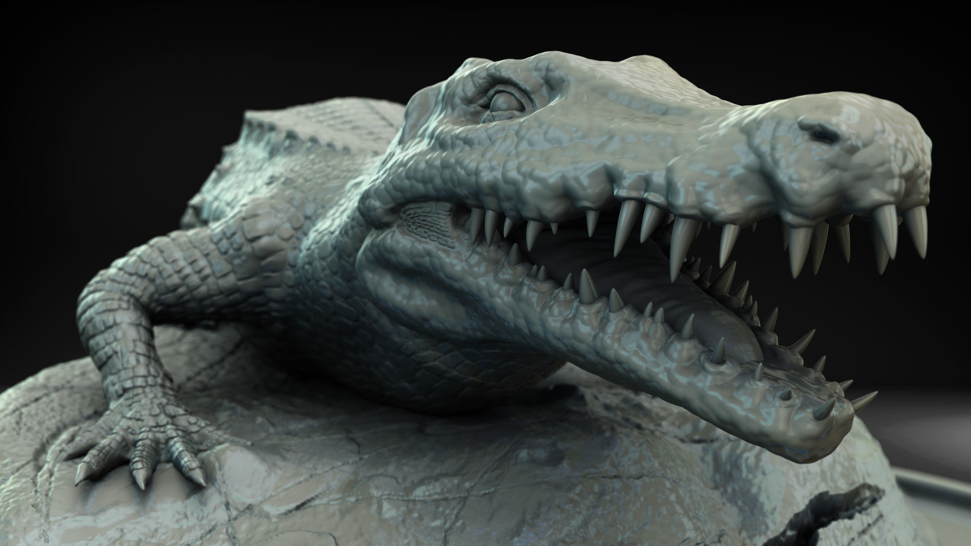 Sergio lobo crocodile face