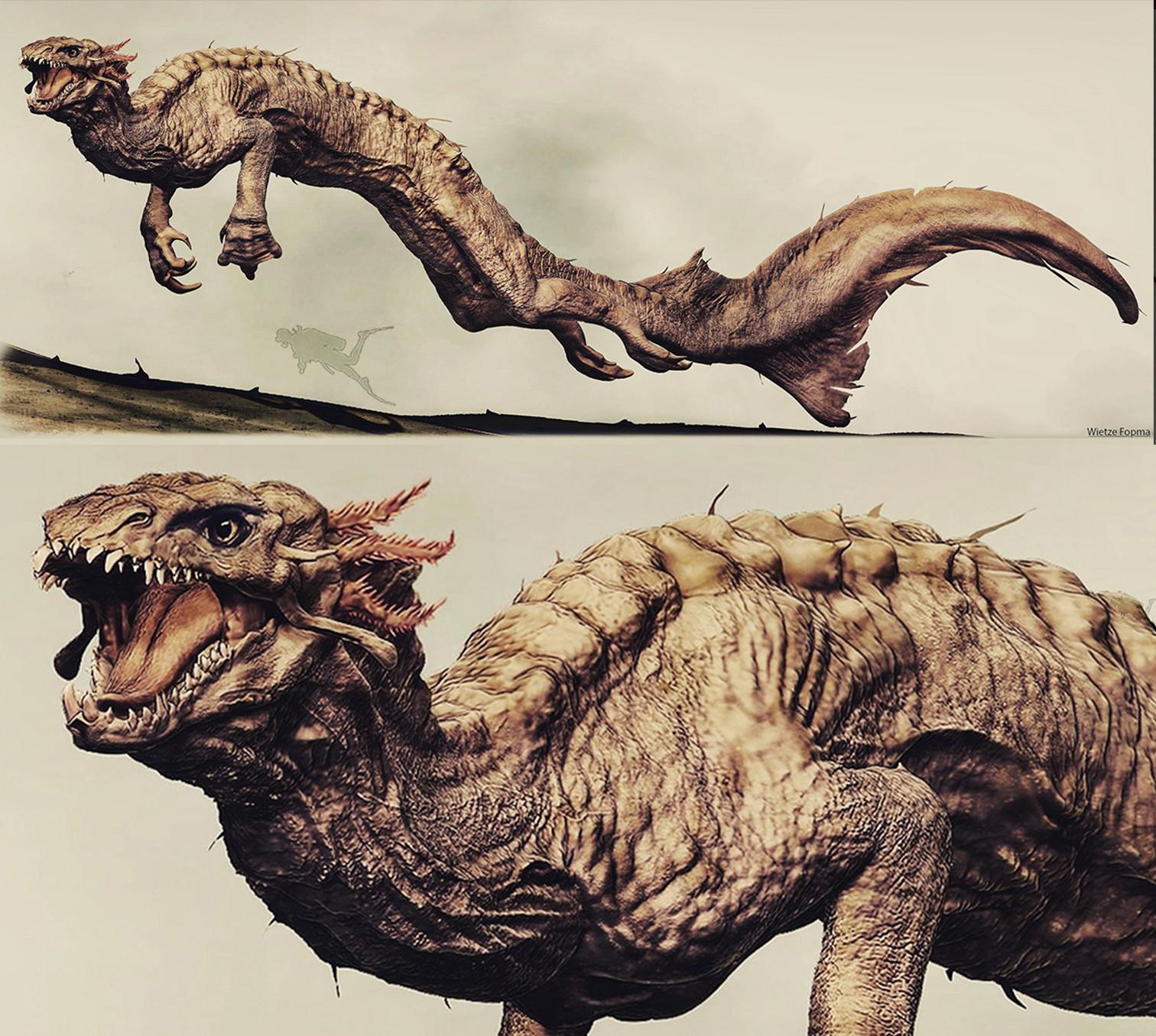 Wietze fopma rough water dragons2 finl