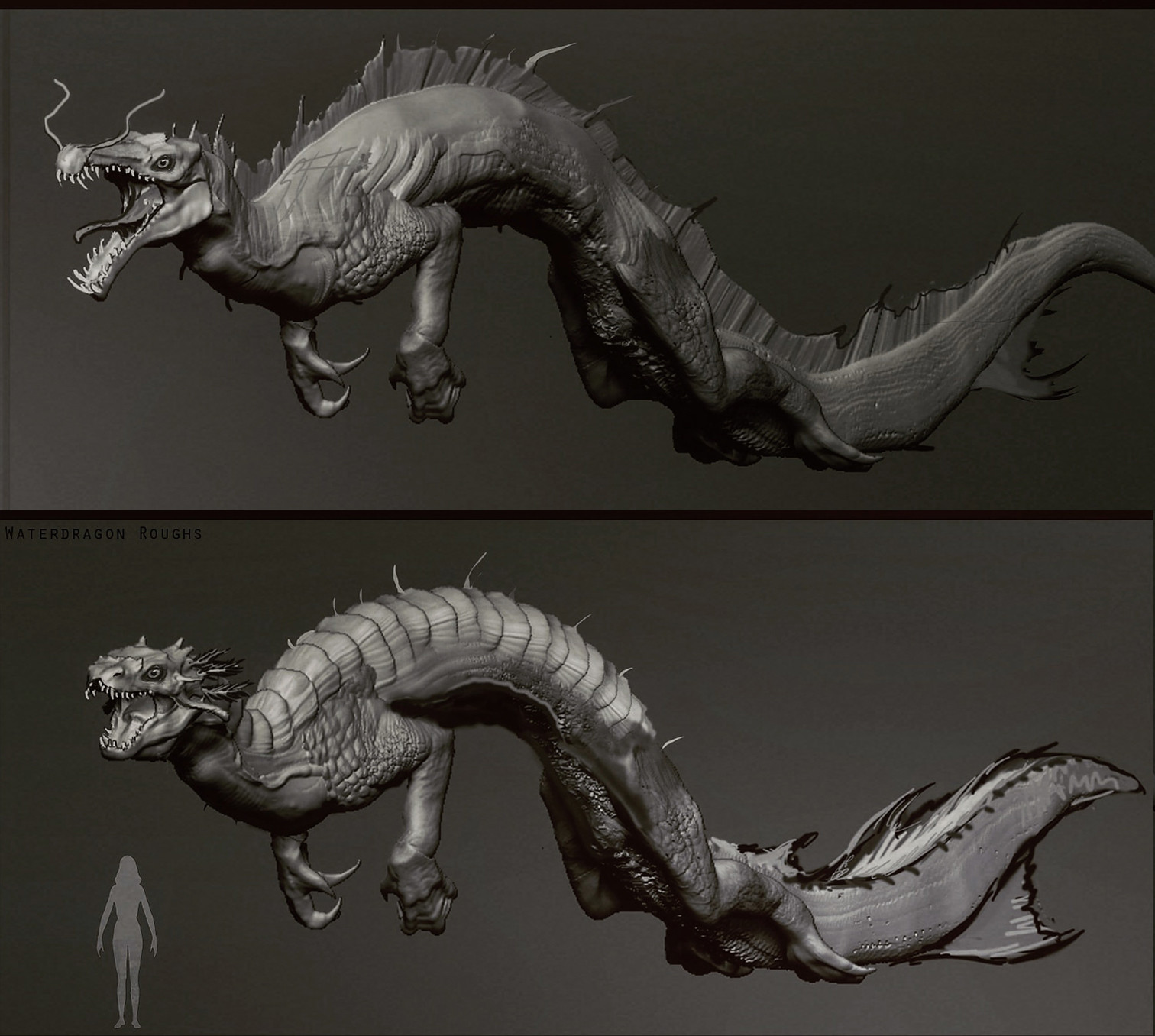 Wietze fopma rough water dragons1