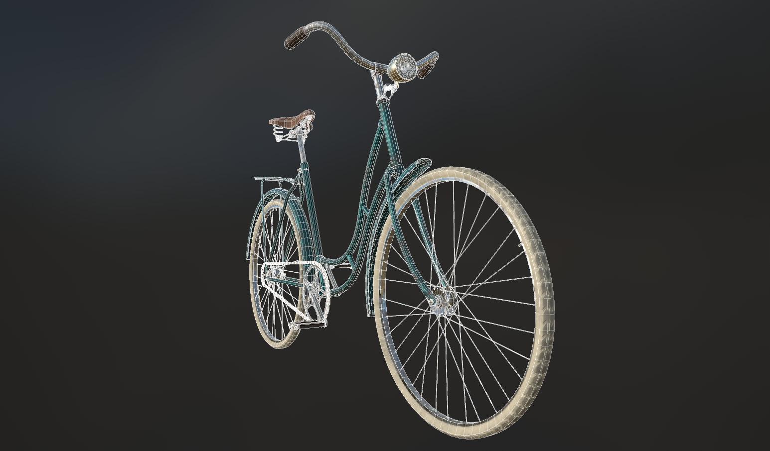 Litha bacchi bike08