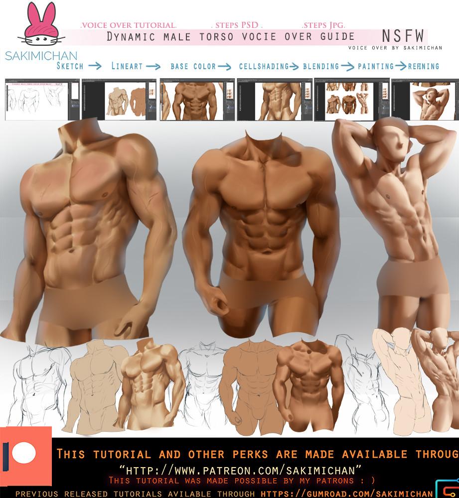 Sakimi chan dynamic male torso guide promo