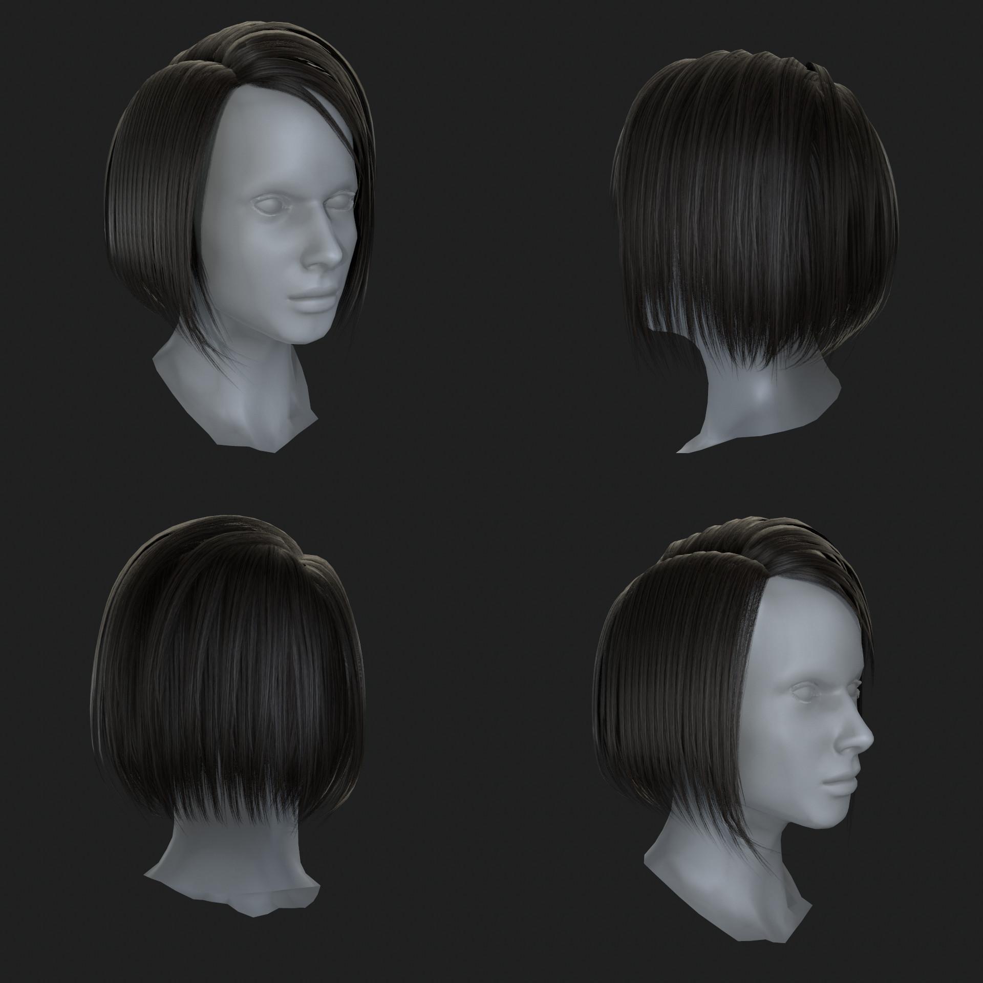 Philipus nico hairr04