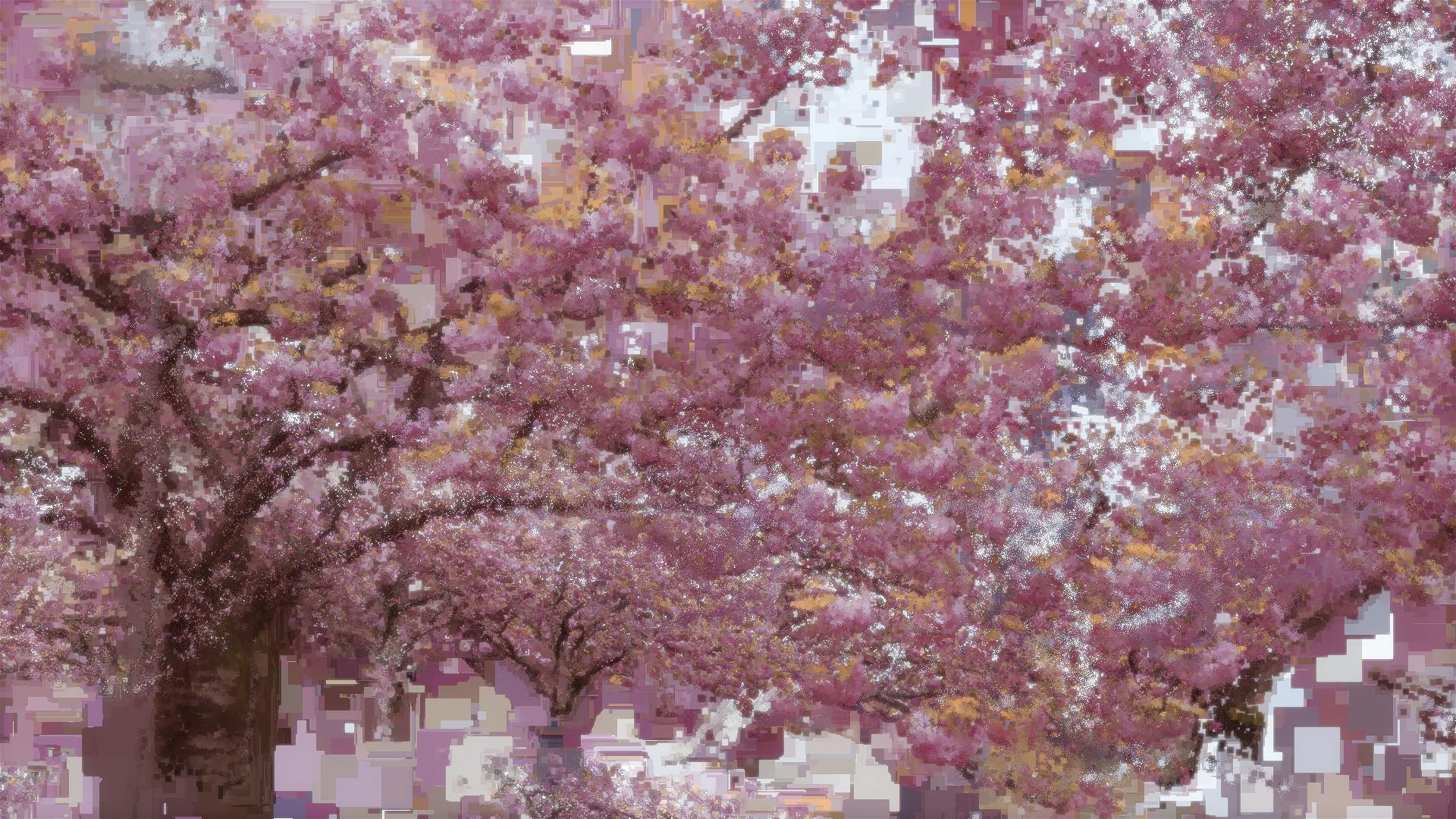 Benjamin bardou fleurs de cerisier i 00200