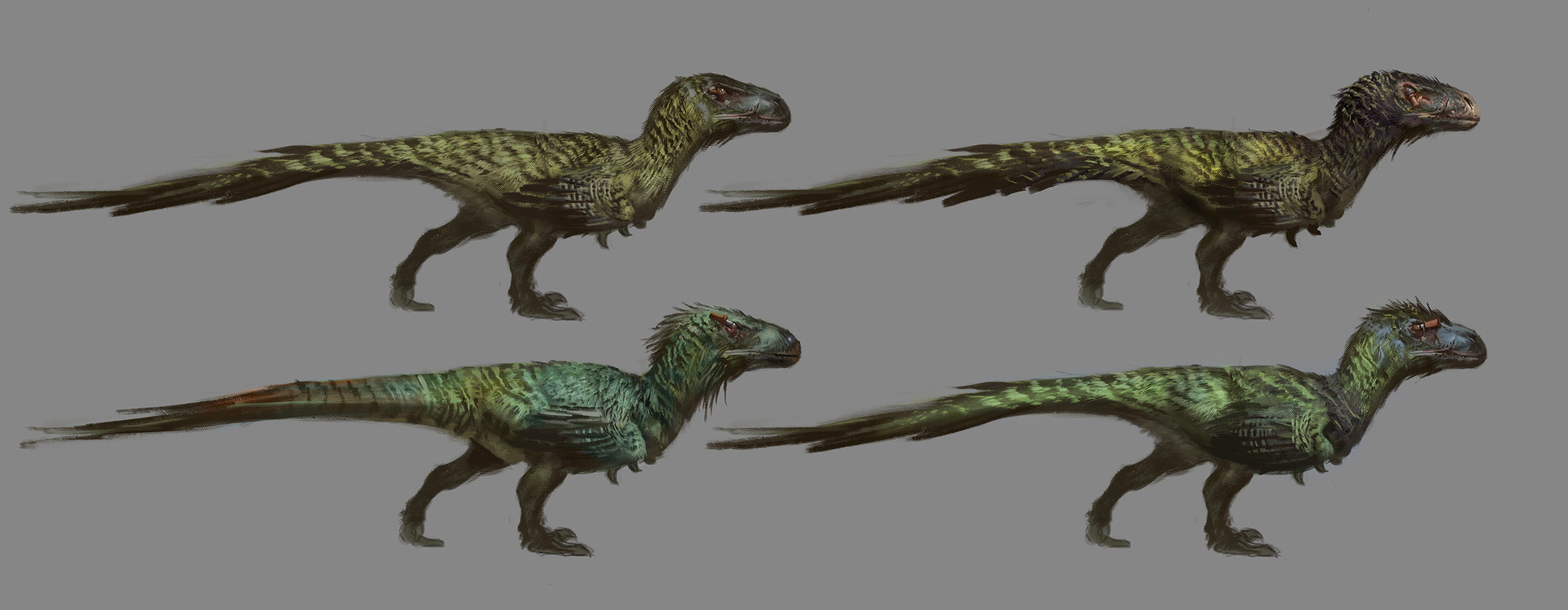 Utahraptor sketches
